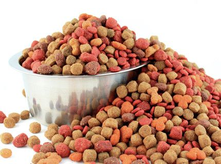 SafTest For Pet Food
