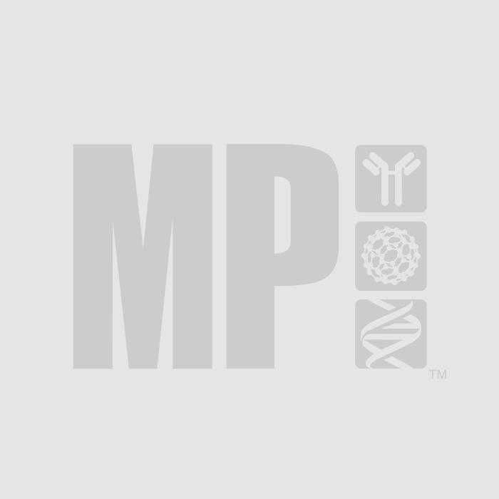 dNTPs Mix (25 mM each)