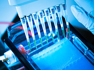 Amplification: Achieve consistent PCR results